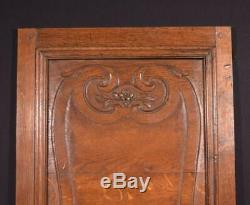 1700's Antique 17 Wide French Louis XIV Period Solid Oak Panel (6)